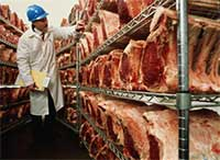 Introduction to Food Safety Standards