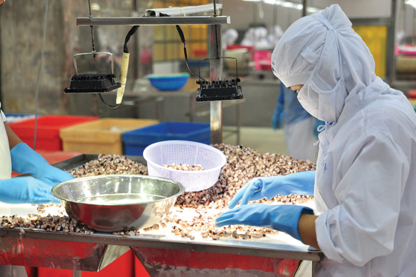 Why Culture Causes Food Safety Problems