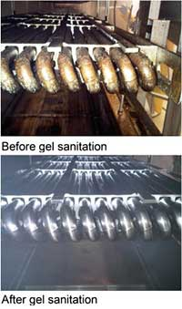 Gel Sanitizing Chemicals Can Enhance Food Safety, Sustainability and the Bottom Line