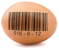 Food Traceability - Global Food Safety Resource