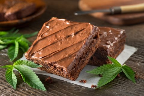 Food Safety Solutions for Edible Cannabis: Contamination, Sourcing and SOPs