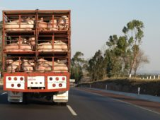 Sanitary Transportation of Human and Animal Food Rule