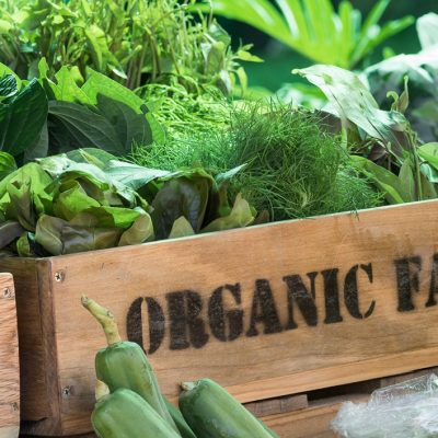 Tap into a Large and Growing Market by Getting Certified Organic