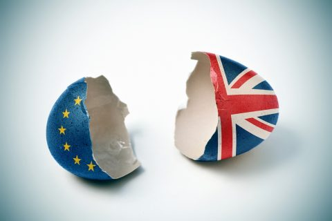 Brexit Uncertainty Cause for Concern for Regulating EU Food Safety