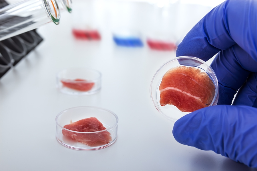 Meat cultured in laboratory conditions from stem cells. Artificial meat