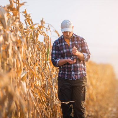 Food Safety and Shifting Global Pressures: Are We Ready? Part 2