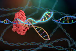 Investing In CRISPR, The First Programmable Antimicrobial