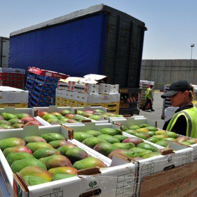 Trending: Less Recalls in 2020 but Increases in Food Fraud Predicted Ahead