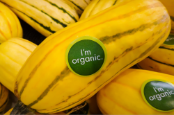 How to Protect Your Company from Organic Food Fraud